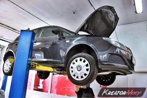 Zapchany DPF Seat Ibiza 6J 1.4 TDI 80 KM