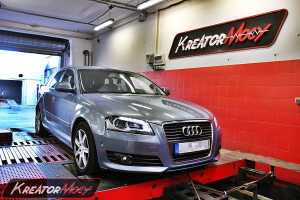 Chip tuning Audi A3 8P 1.6 TDI CR 105 KM